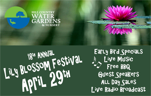 Lily Blossom 2017 Flyer Front No Border